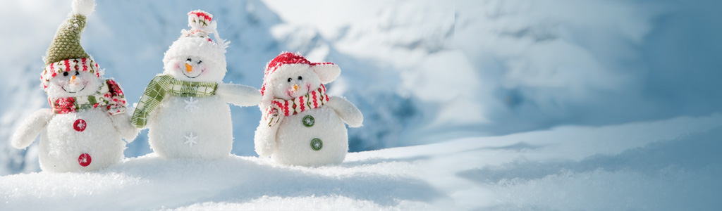 HCLS Holiday Classes & Events